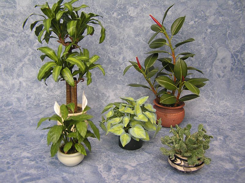 Dollhouse Miniature Plants by Carolyn Mohler Kraft