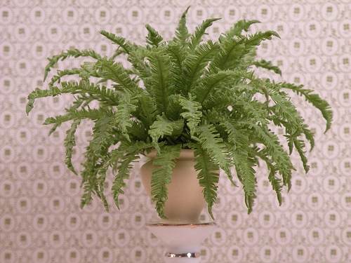 dollhouse miniature plant - Boston Fern large
