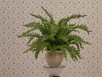 dollhouse miniature plant - Boston Fern small