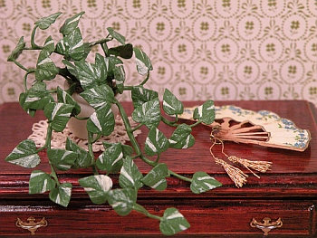 dollhouse miniature plant - Devil's Ivy